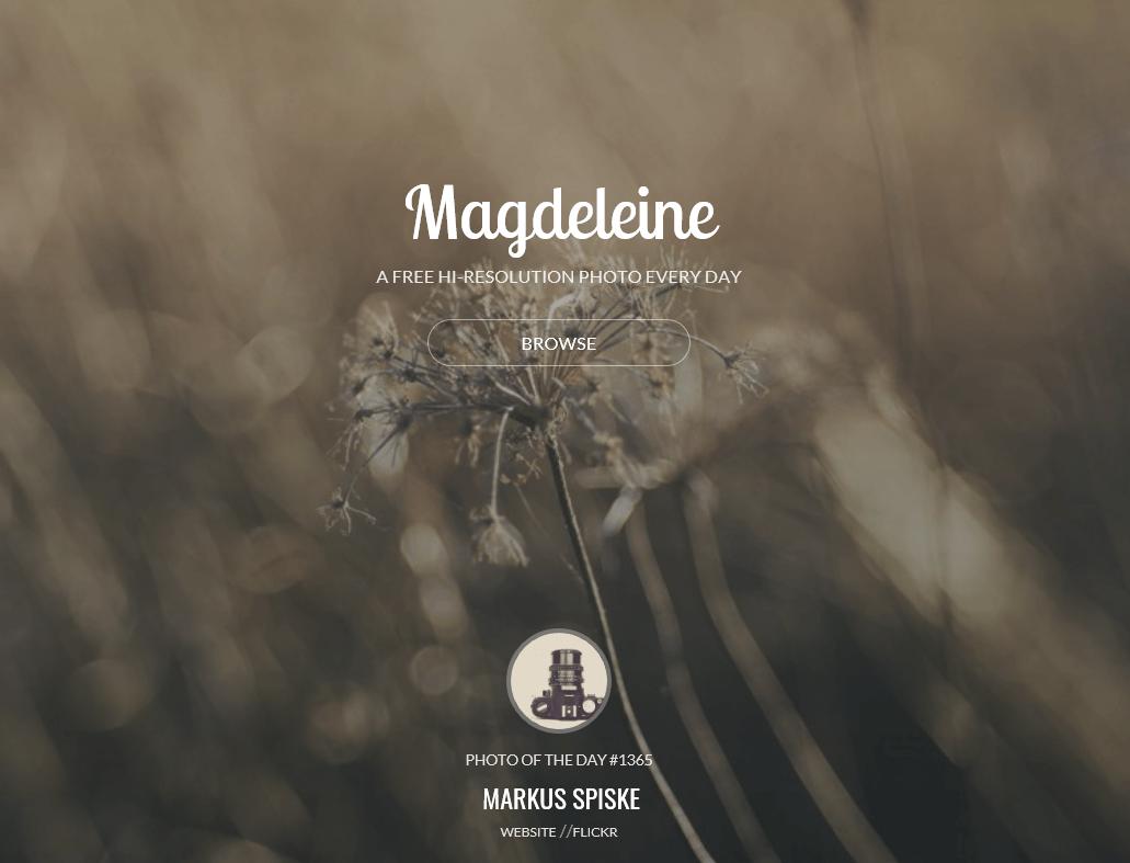 色やカテゴリでフリー写真素材をサーチ可能なMagdeleine